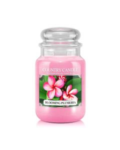 Country Candle Jar Blooming Plumeria Large von Kringle Candle bei American Heritage