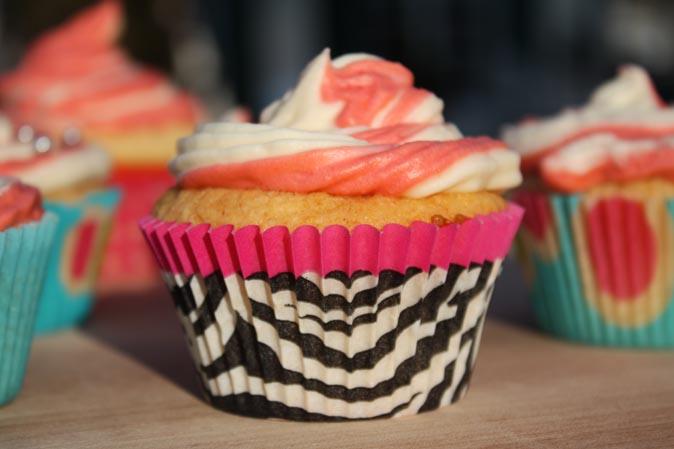 Neu bei American Heritage: Papierförmchen von Cupcake Creations