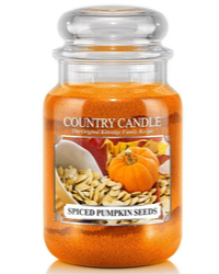 Herbstlicher Duft Spiced Pumpkin Seeds