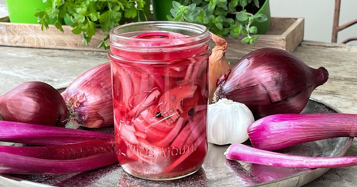 Pickling - Eingelegte Zwiebeln
